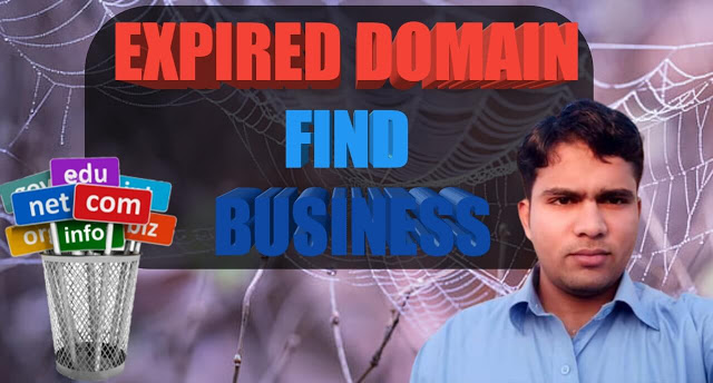 How To Sell Expired Domains With Traffic [WT1] Hindi